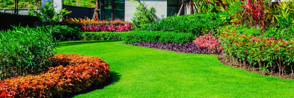 Commercial & Residential Landscaping
